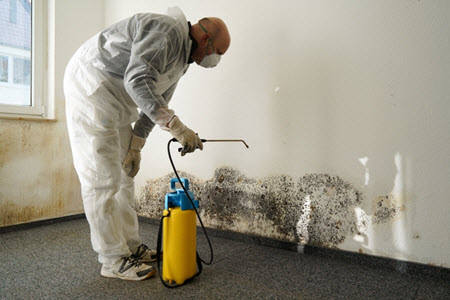 technician performing mold remediation